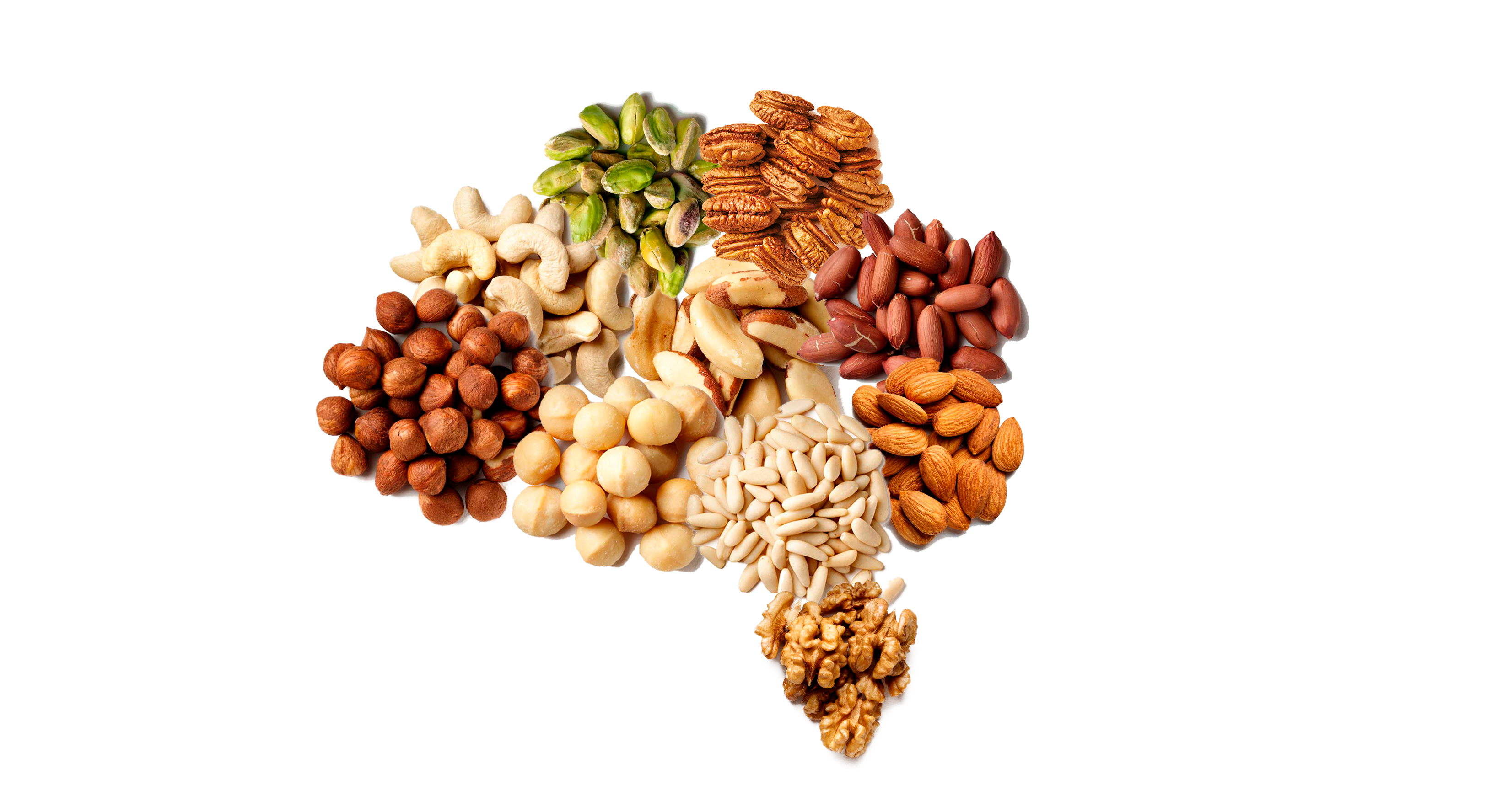Want to Have a Better Brain Health? Diet is Key! (And Nuts Too)