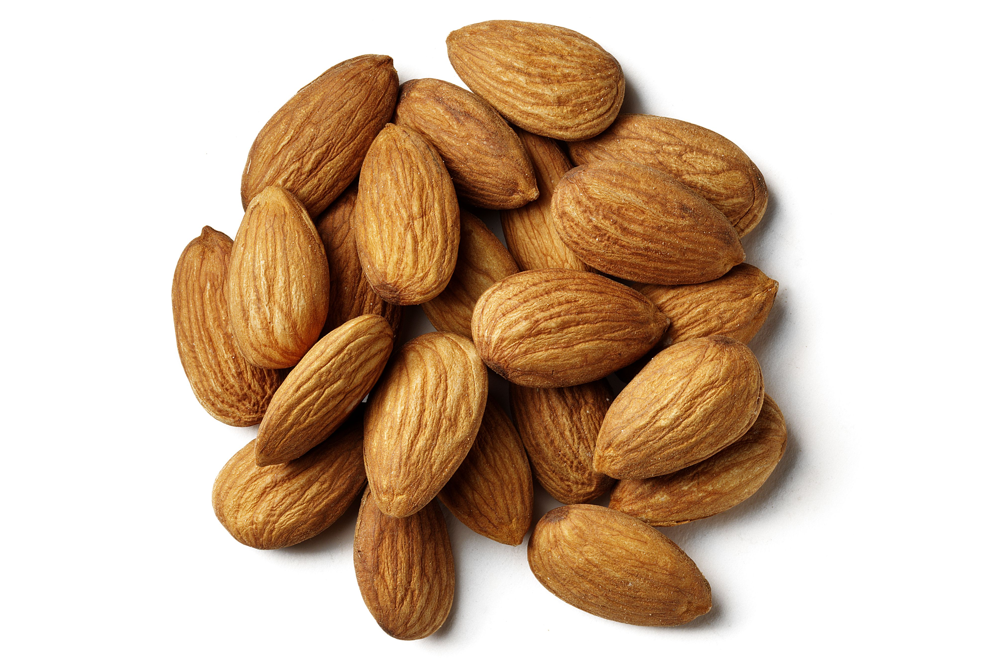 Almond Skin Polyphenols May Help Modulate Plasma Biomarkers of Oxidative Stress